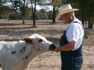 Doug with heifer
